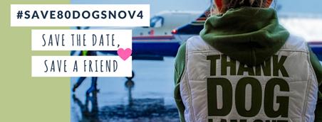#Save80DogsNov4