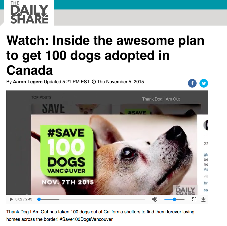 Watch: Inside the awesome plan to get 100 dogs adopted in Canada